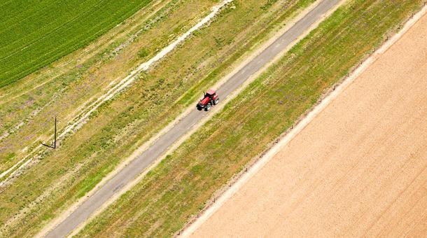 Fotografujemy <b>działki rolne, budowlane</b>